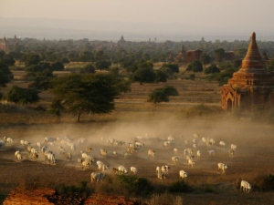 bagan-ancient_myanmar-adventure