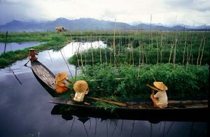 inle-lake-floating-garden-burma-1